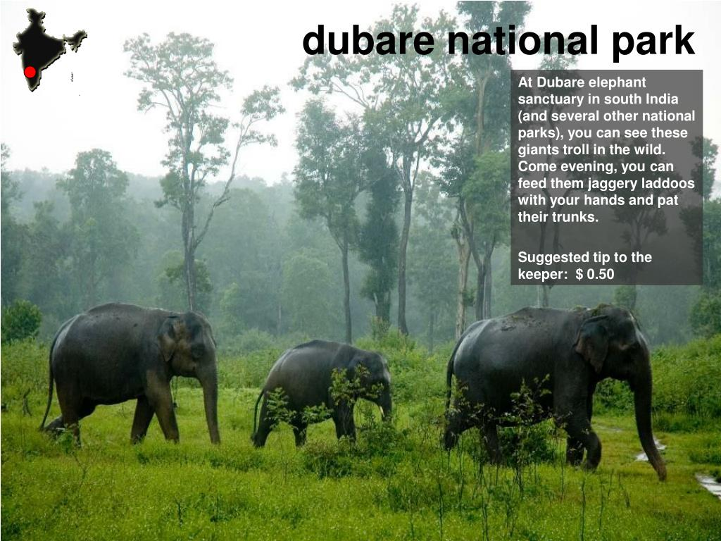 dubare national park