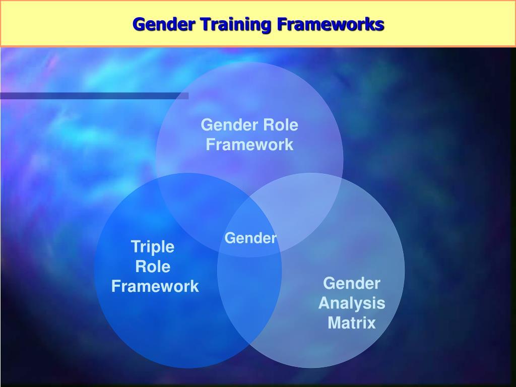 Gender Role Framework