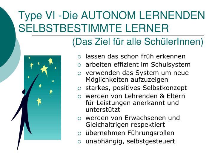 Type VI -Die AUTONOM LERNENDEN
