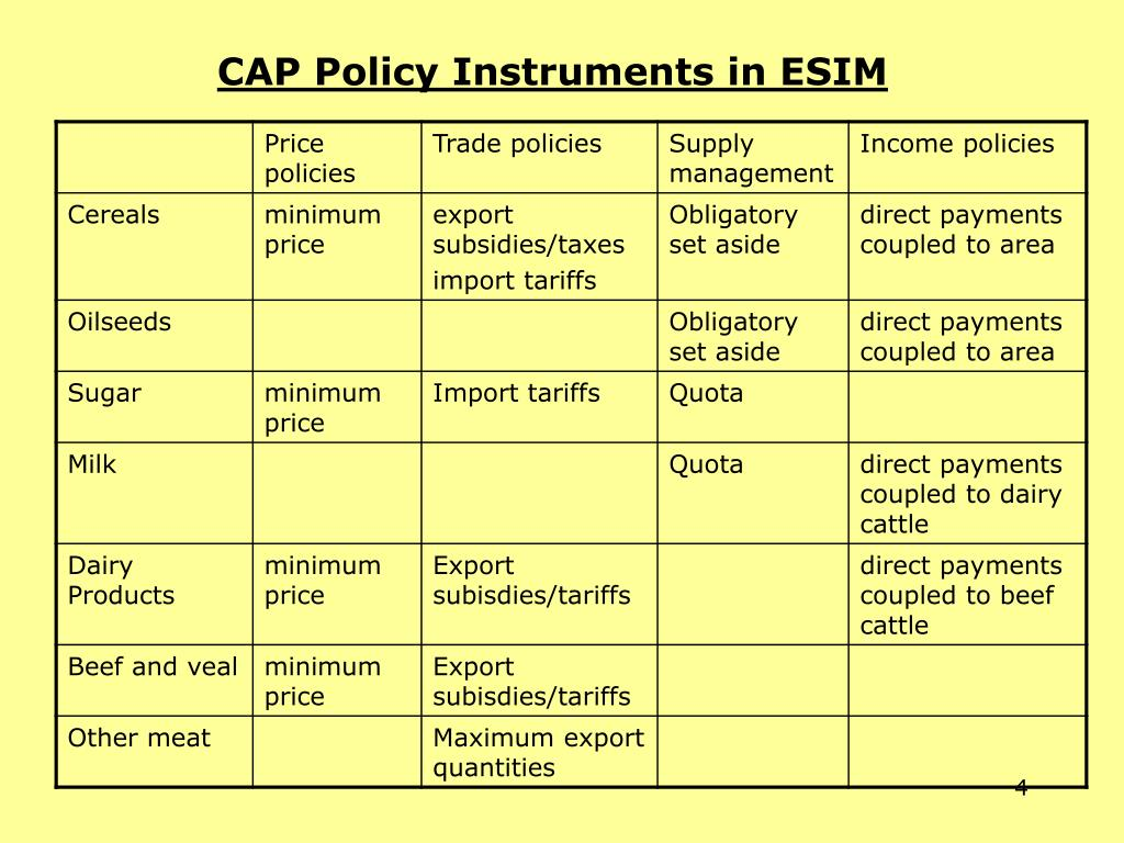 CAP Policy Instruments in ESIM