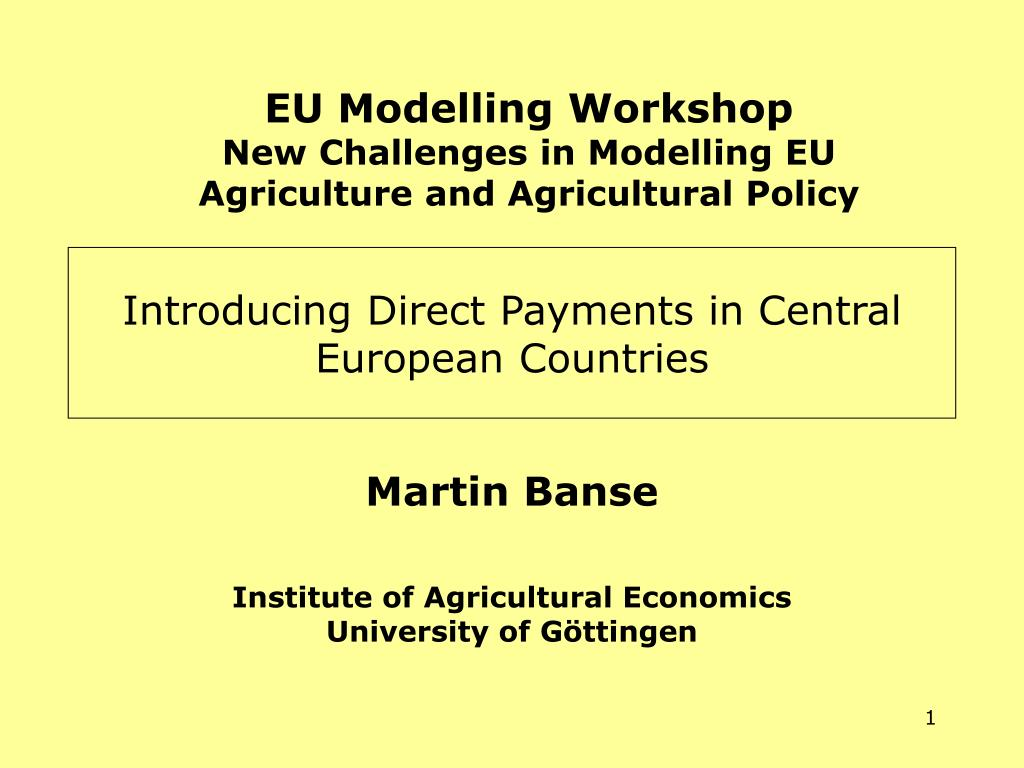 EU Modelling Workshop
