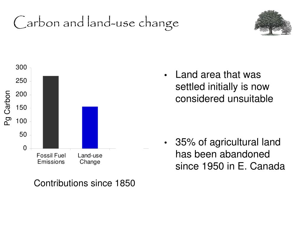 Carbon and land-use change