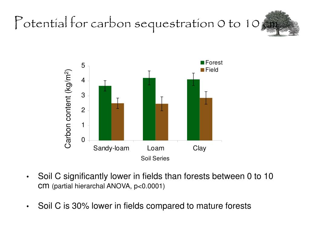 Potential for carbon sequestration 0 to 10 cm