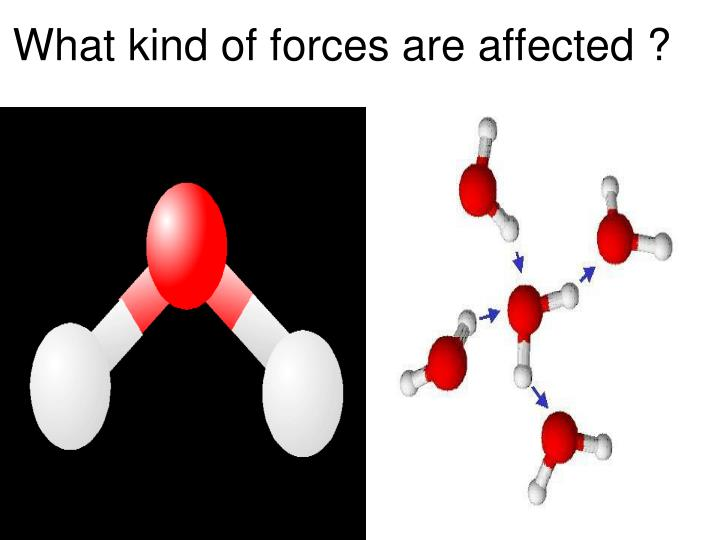 What kind of forces are affected ?
