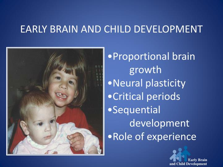 Early Brain
