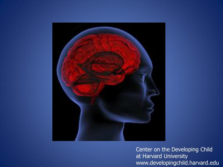 Center on the Developing Child