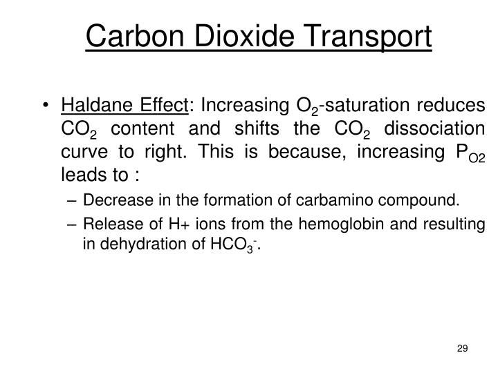 Carbon Dioxide Transport