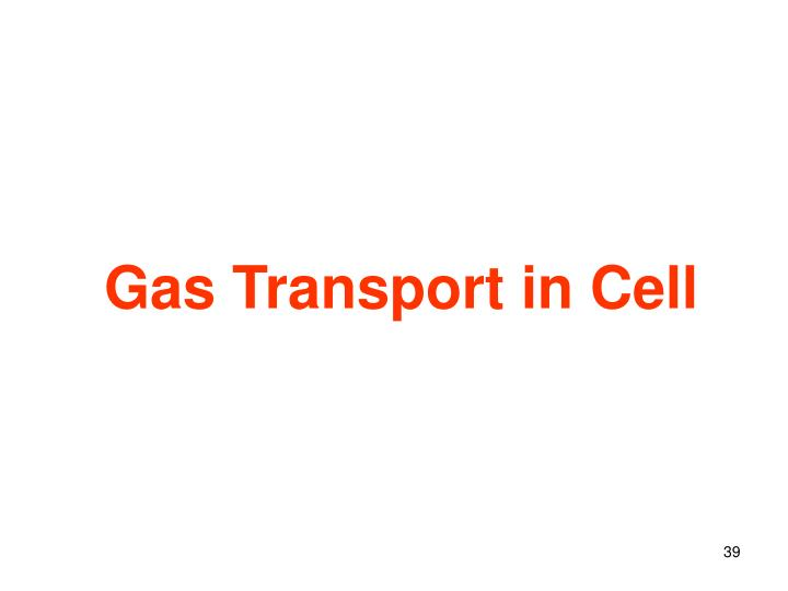 Gas Transport in Cell
