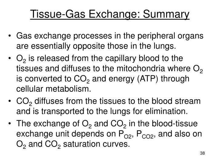 Tissue-Gas Exchange: Summary