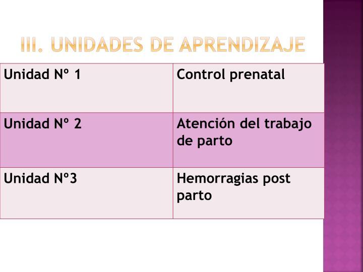 III. Unidades de Aprendizaje