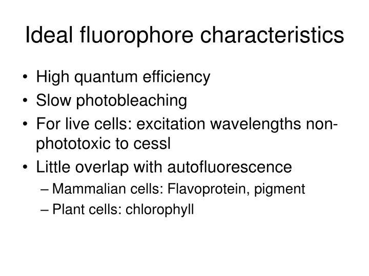 Ideal fluorophore characteristics