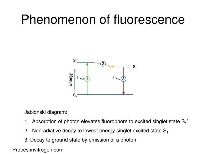 Phenomenon of fluorescence