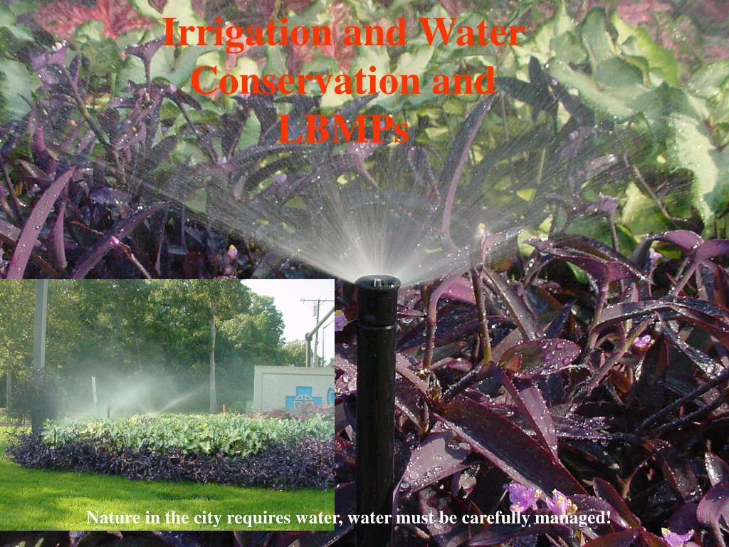 Irrigation and Water Conservation and LBMPs