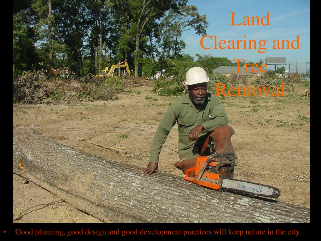 Land Clearing and Tree Removal