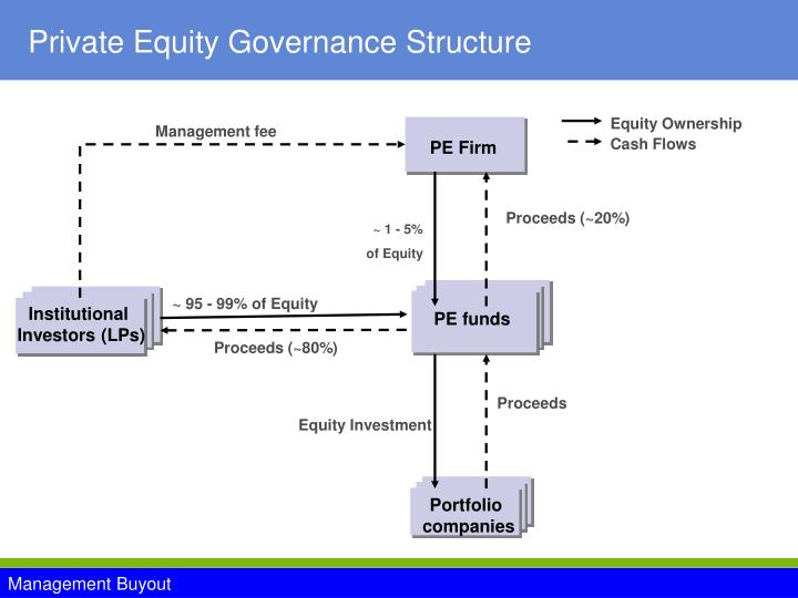 Private equity governance structure