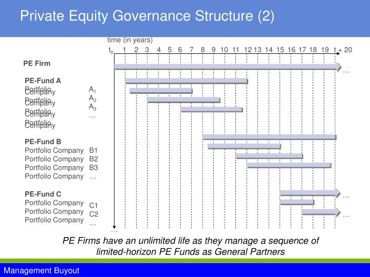 Private Equity Governance Structure (2)