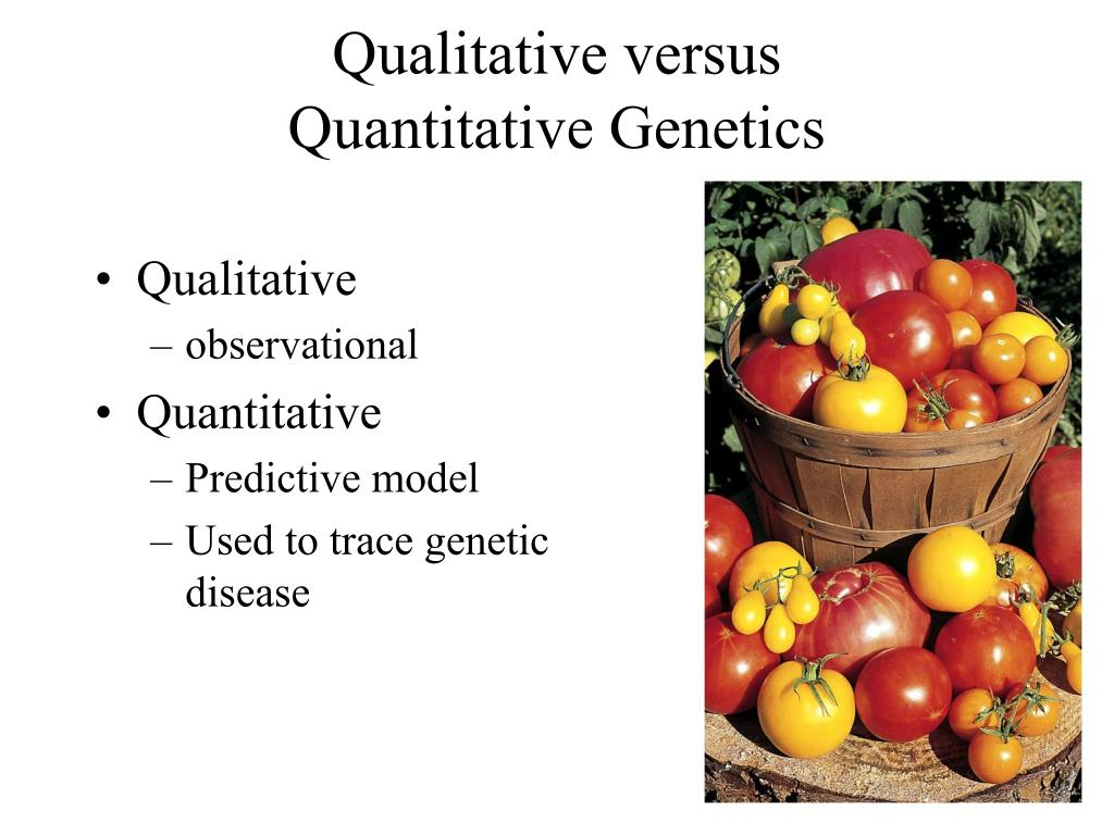 Qualitative versus