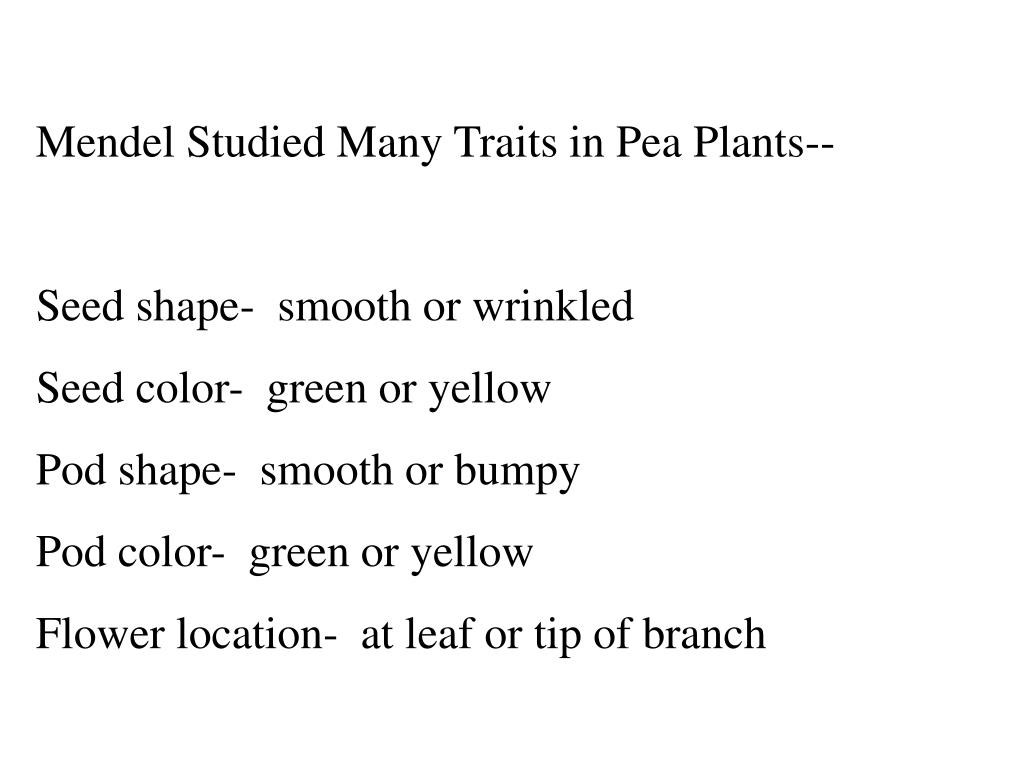 Mendel Studied Many Traits in Pea Plants--