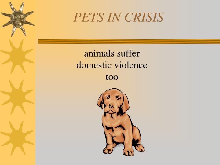 PETS IN CRISIS