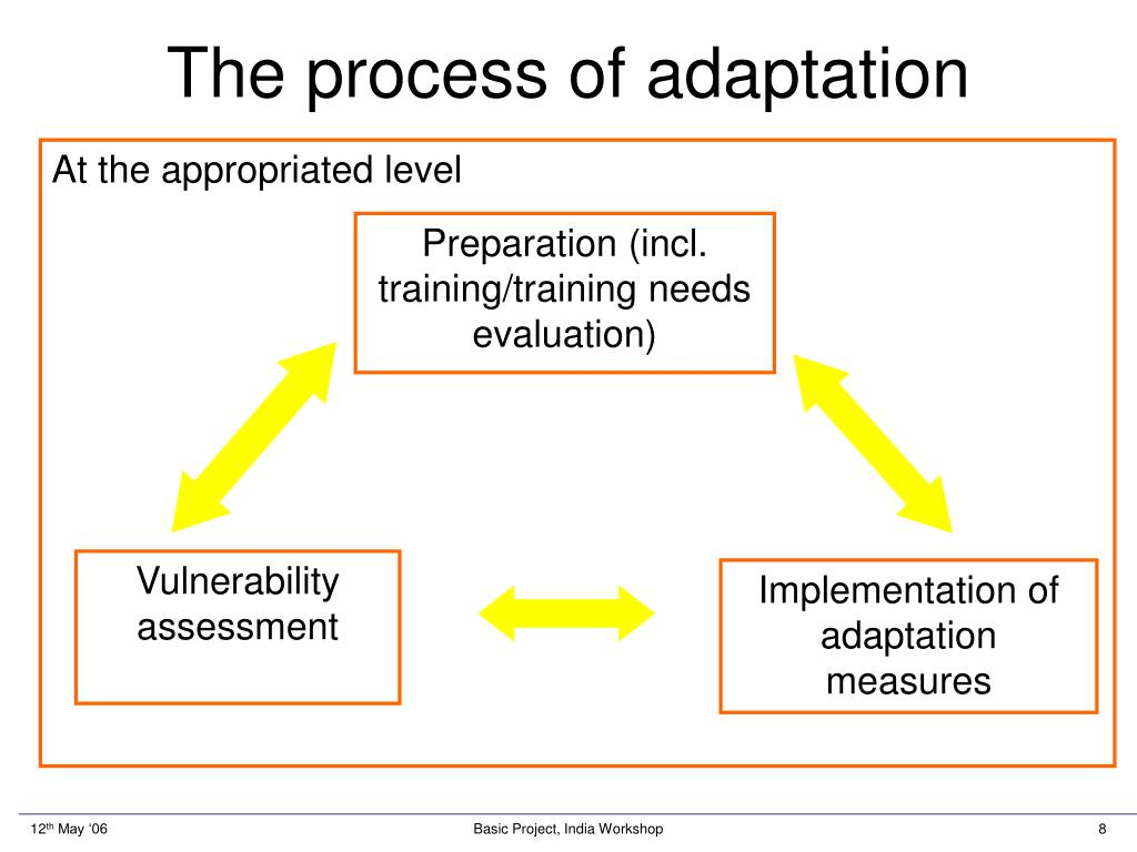 The process of adaptation