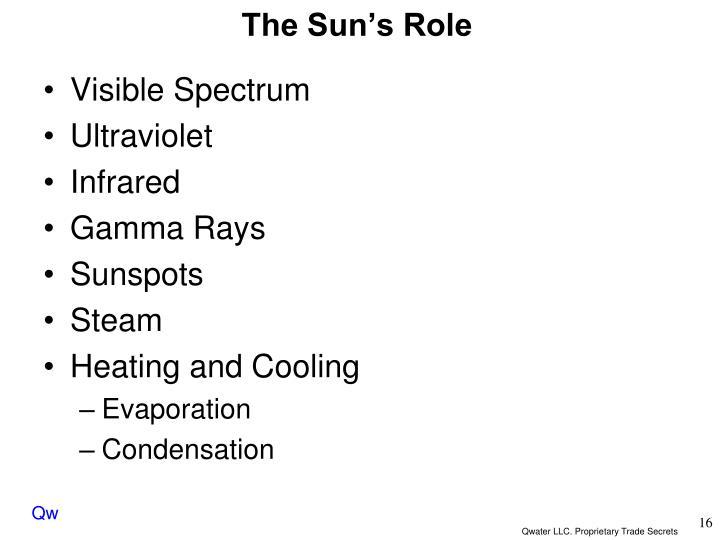 The Sun's Role