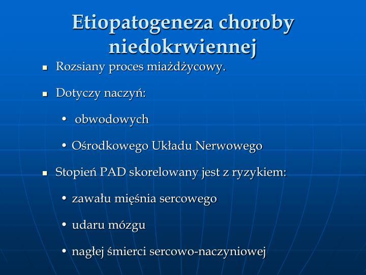 Etiopatogeneza choroby niedokrwiennej