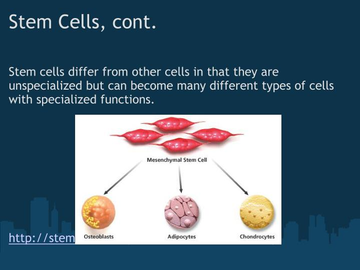 Stem Cells, cont.