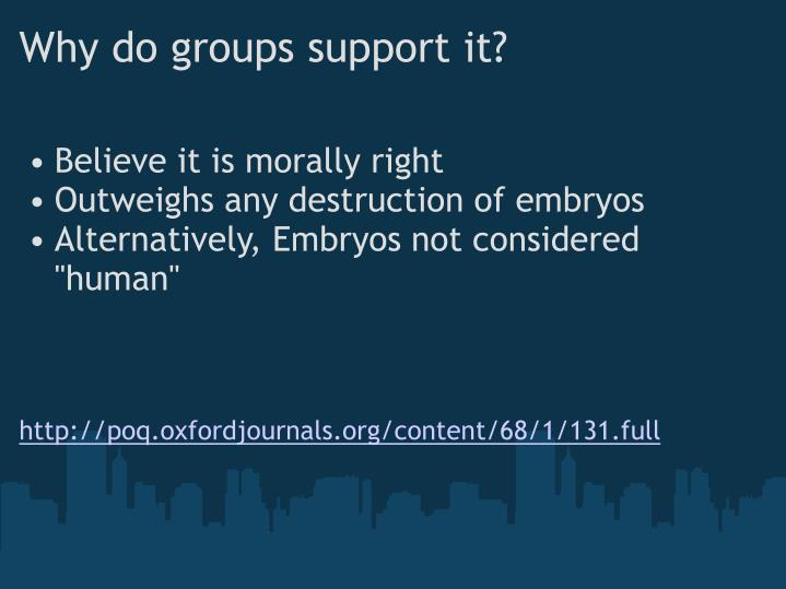 Why do groups support it?