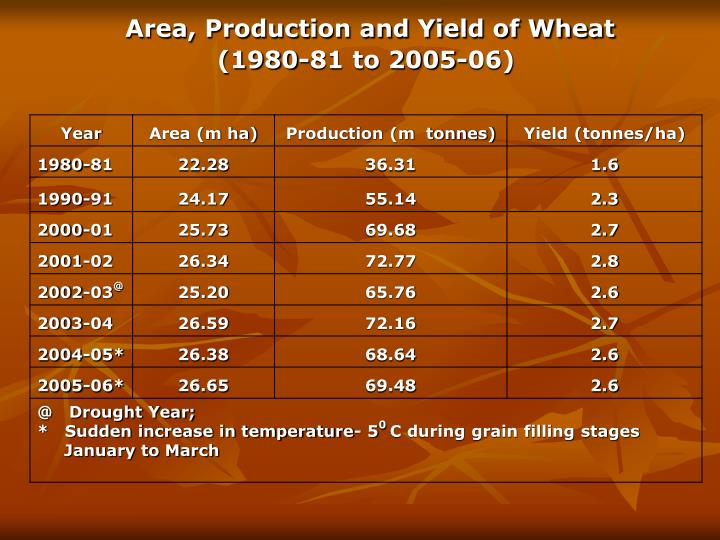 Area production and yield of wheat 1980 81 to 2005 06