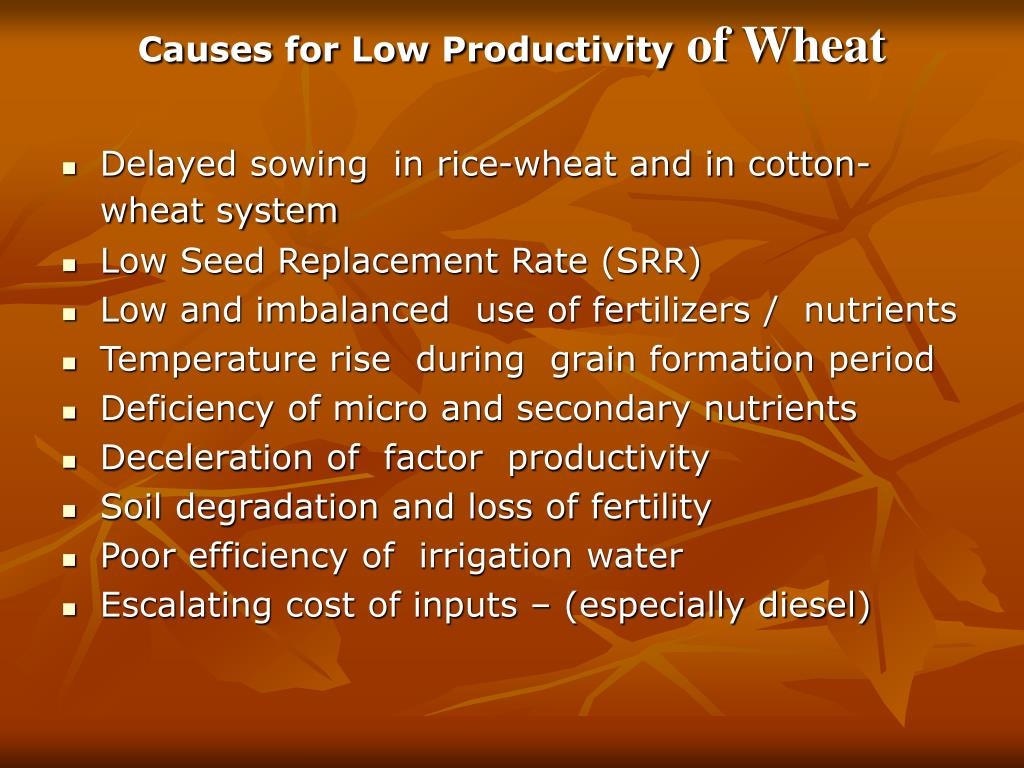 Causes for Low Productivity