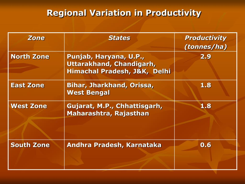 Regional Variation in Productivity