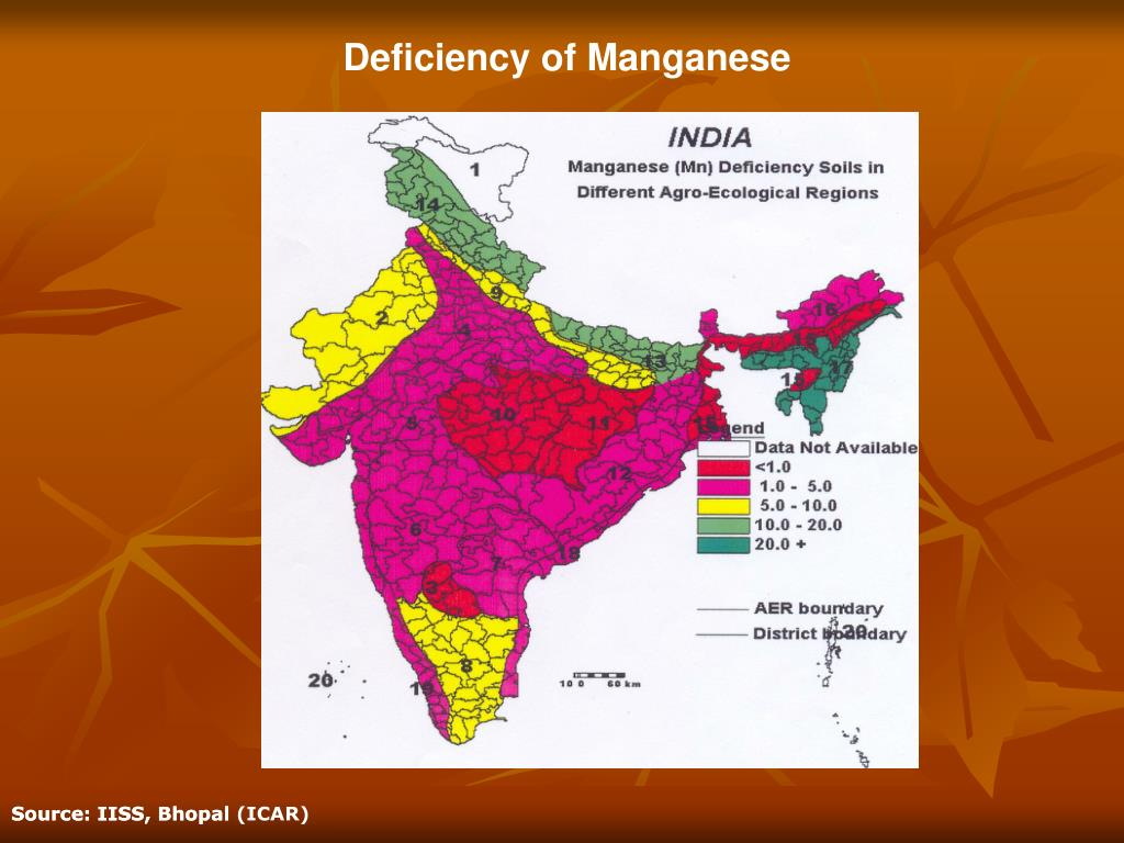 Deficiency of Manganese