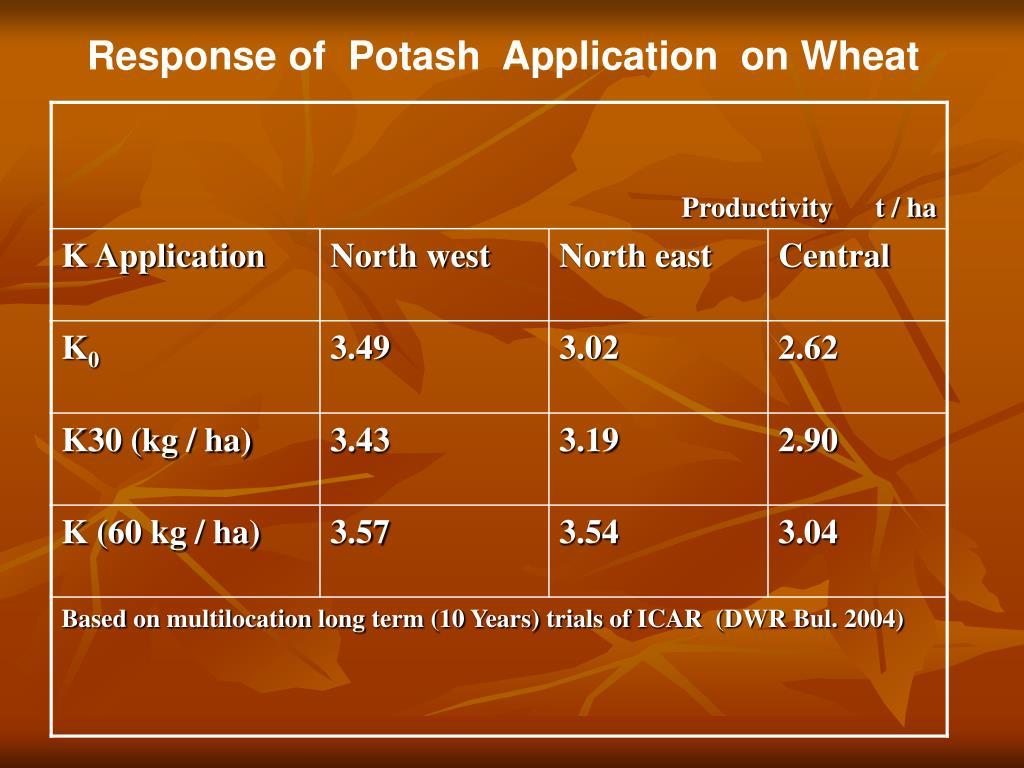 Response of  Potash  Application  on Wheat