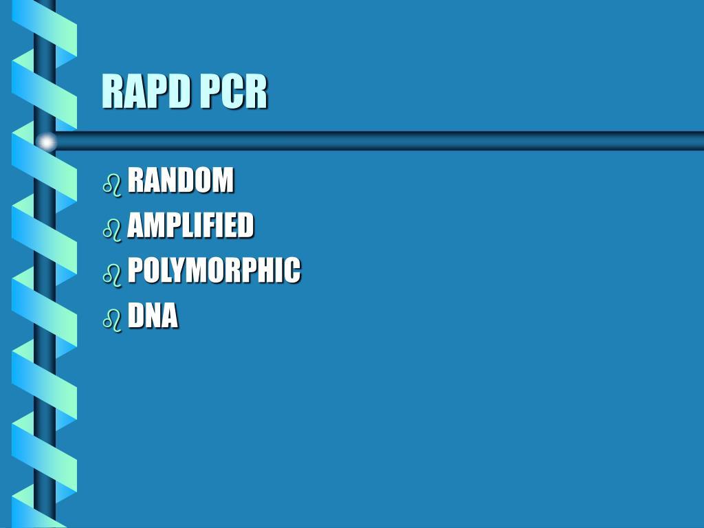 RAPD PCR