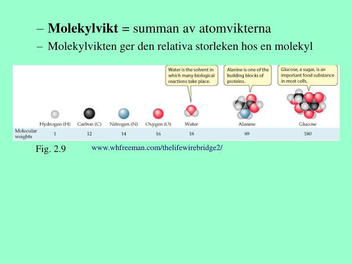 Molekylvikt