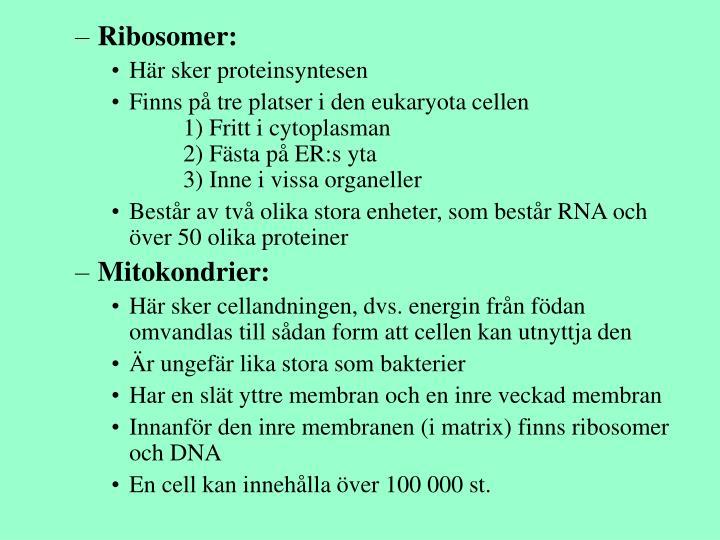 Ribosomer:
