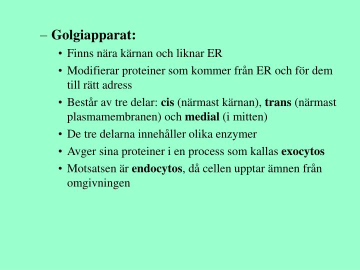 Golgiapparat: