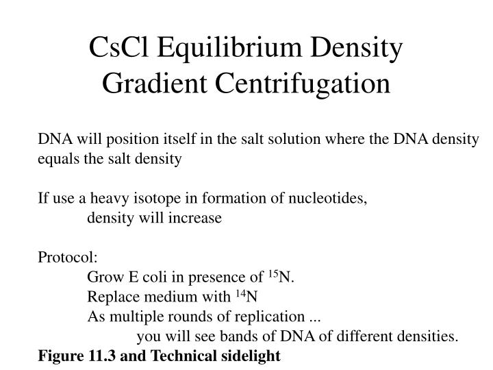 Cscl equilibrium density gradient centrifugation