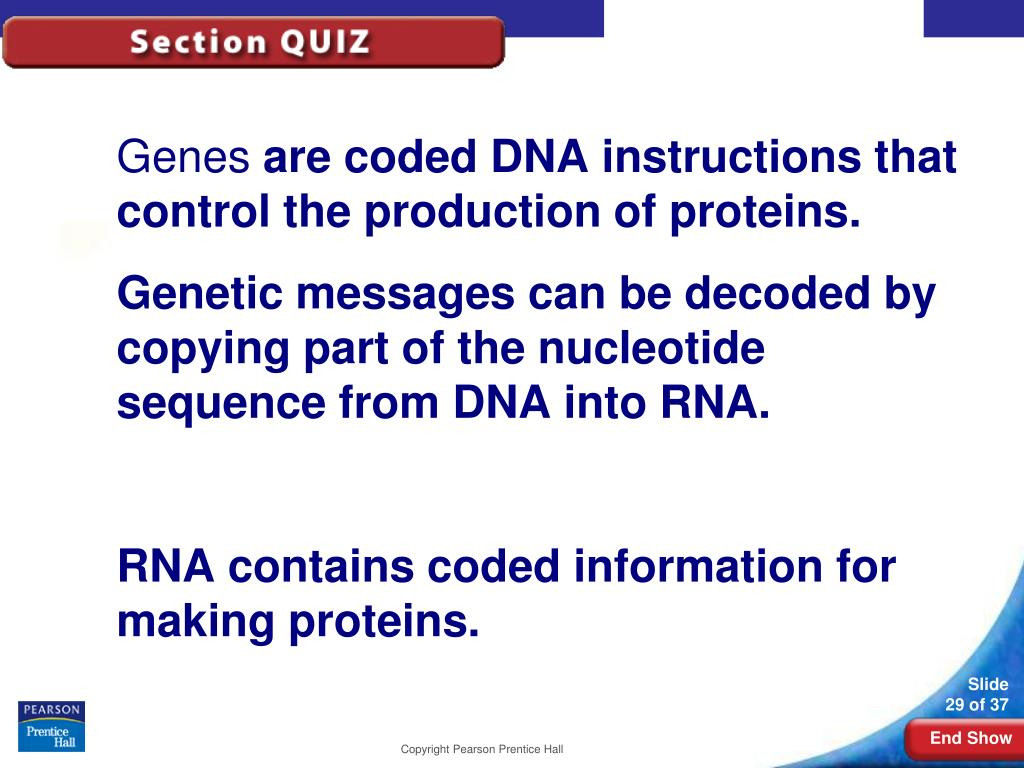 12–3RNA and Protein
