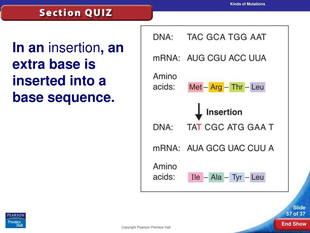 Kinds of Mutations