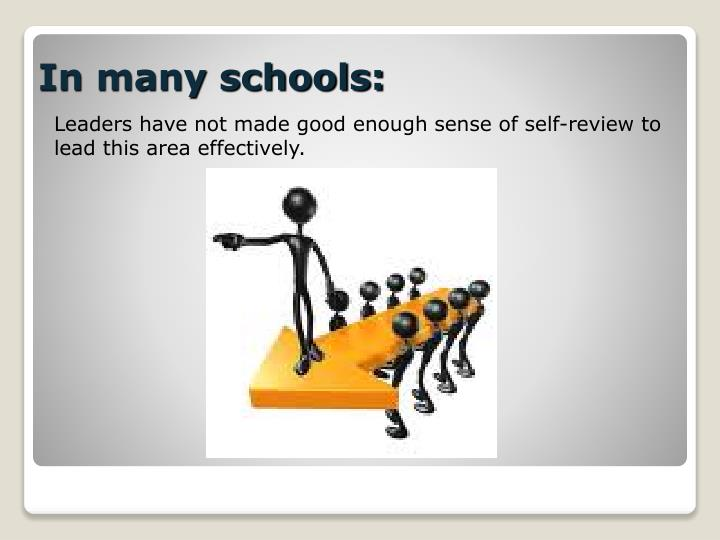 Leaders have not made good enough sense of self-review to lead this area effectively.