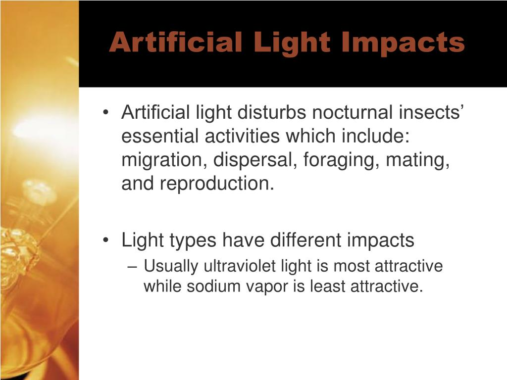 Artificial Light Impacts