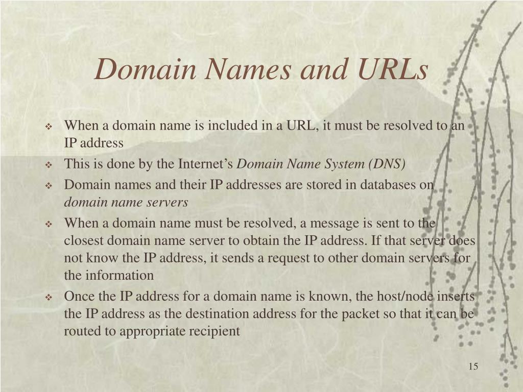 Domain Names and URLs