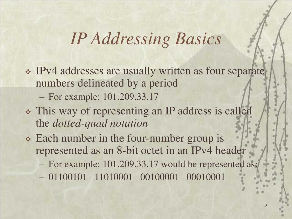IP Addressing Basics