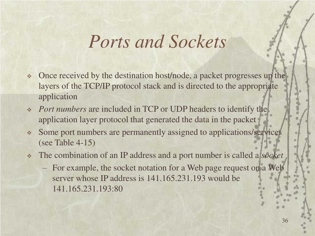 Ports and Sockets
