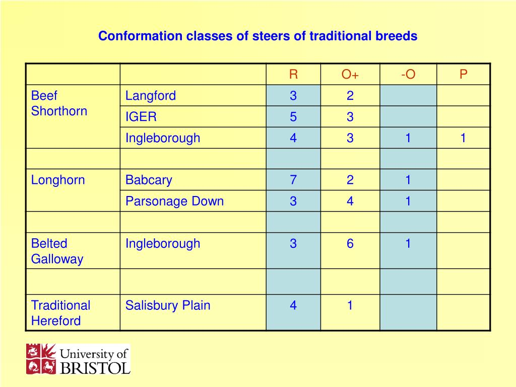 Conformation classes of steers of traditional breeds