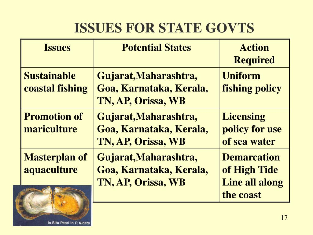 ISSUES FOR STATE GOVTS