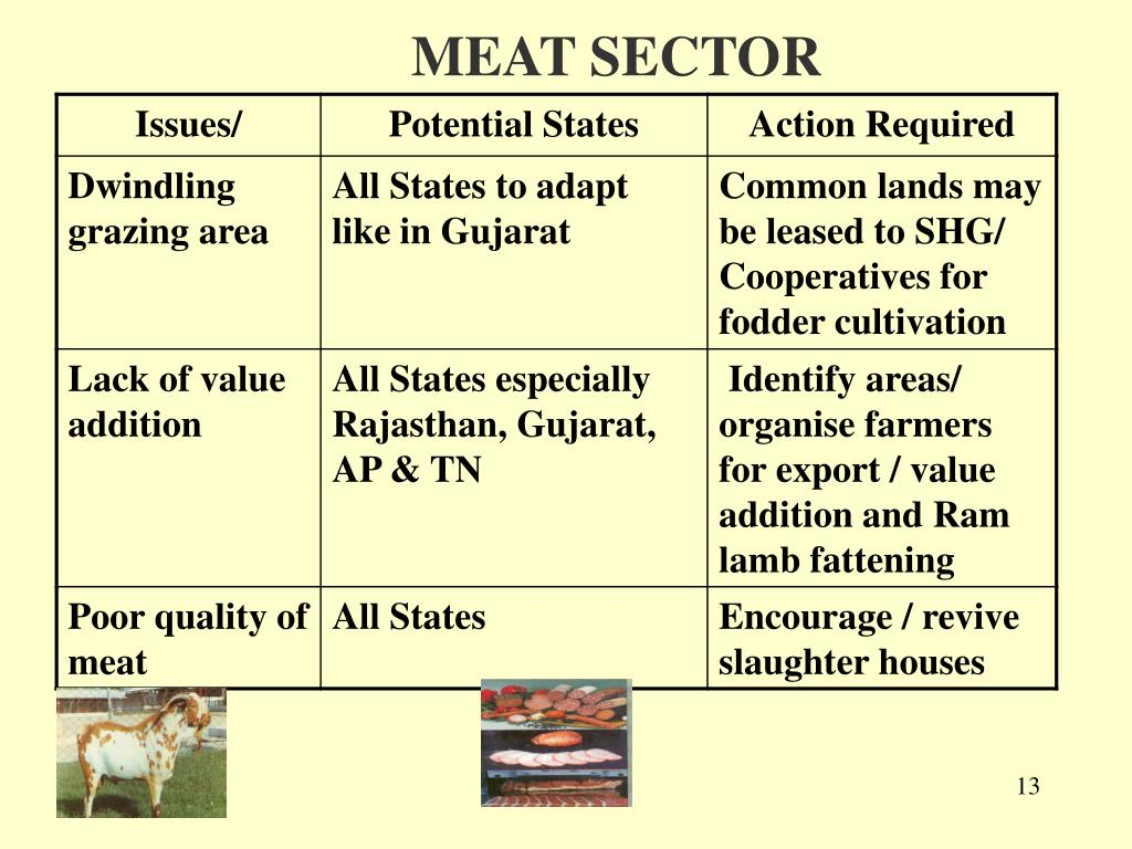 MEAT SECTOR
