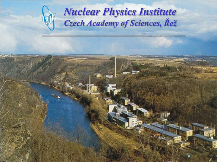 Nuclear Physics Institute