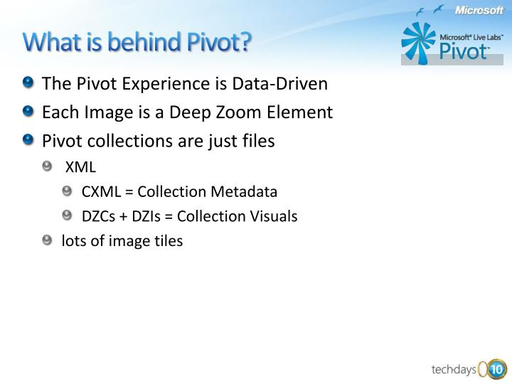 The Pivot Experience is Data-Driven